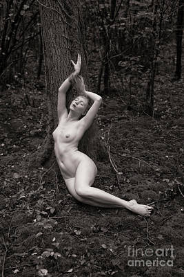 Photograph - Forest Nude by Clayton Bastiani