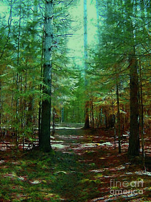 Photograph - Forest Path Blue Green Light by Shirley Moravec
