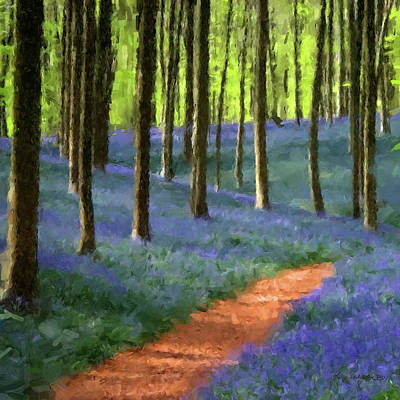 Digital Art - Forest Path by Gary Grayson