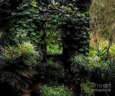 Photograph - Forest by Paulette Thomas