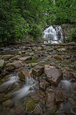 Photograph - Forest Peace At Hawk Falls by Rick Berk