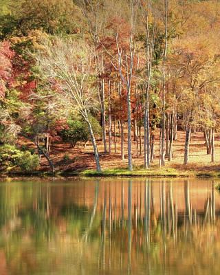Digital Art - Forest Reflections by Lori Deiter