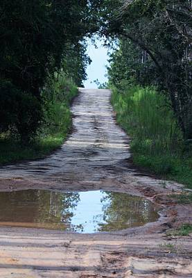 Photograph - Forest Road And Puddle by Warren Thompson