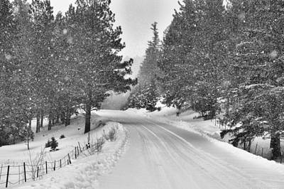 Photograph - Forest Road In The Snow by Jacqui Binford-Bell