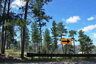 Photograph - Forest Road - Keep Right Sign by Matt Harang