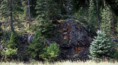 Digital Art - Forest Rock Face by Aliceann Carlton