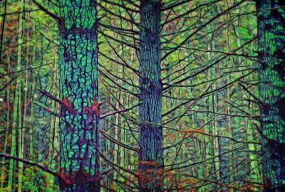 Digital Art - Forest Splendor by Richard Farrington