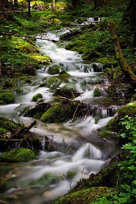 Stream Lanscape Photograph - Forest Stream by Blaz Gvajc