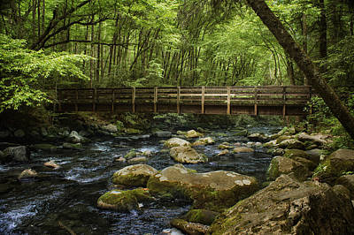 Photograph - Forest Stream - Bridge by Nikolyn McDonald
