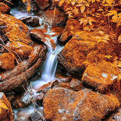 Tranquil Cascade - Indian Summer Art Print by Stephen Stookey
