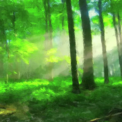Digital Art - Forest Sunlight by Gary Grayson