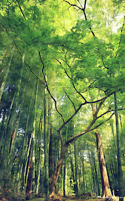 Travel Painting - Forest-sunny Day-03 by Nikolay Ivanov