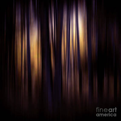 Impressionism Photos - Forest Surround by Sharon Mau