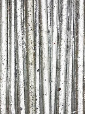 Decorating Mixed Media - Forest by Tony Rubino