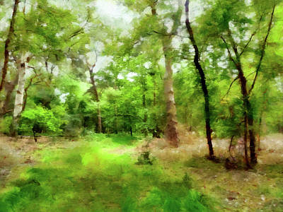 Digital Art - Forest Trail by Valerie Anne Kelly