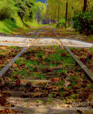 Pittsburgh According To Ron Magnes - Forest Train Track by Marcelo Santos