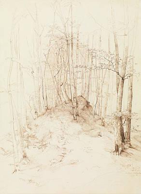 Drawing - Forest View In The Menterschweige District Near Munich by Heinrich Dreber
