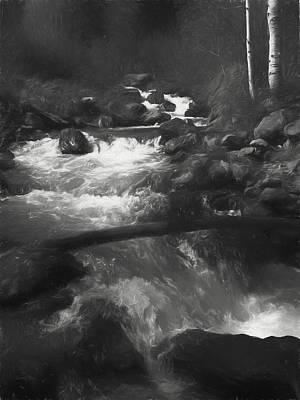 Digital Art - Forest Waters by David King