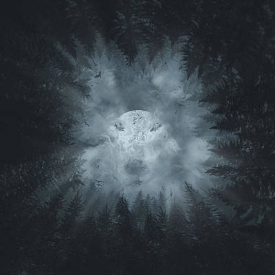 Monochromatic Digital Art - Forest Wolf by Bekim Art