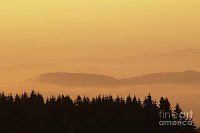 Tremendous Photograph - Forested Hills In Early Morning Mist by Michal Boubin