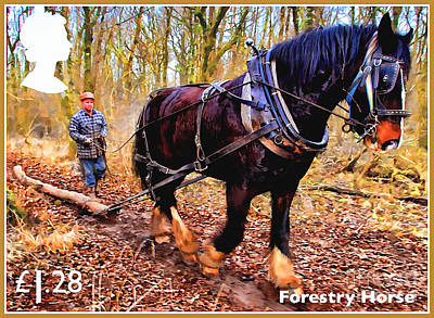 Painting - Forestry Horse by Lanjee Chee