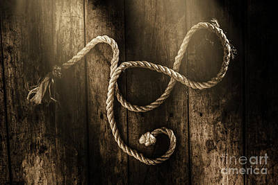 Rope Wall Art - Photograph - Forever A Sailor by Jorgo Photography - Wall Art Gallery