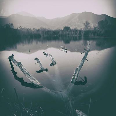 Photograph - Forever by Alfio Finocchiaro