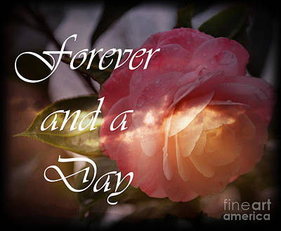 Photograph - Forever And A Day by Eva Thomas