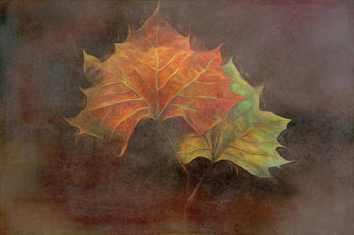 Photograph - Forever Autumn Mood by Debra and Dave Vanderlaan