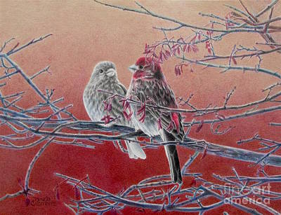 Forever Finch Art Print by Pamela Clements