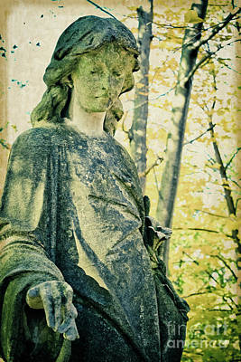 Photograph - Forever Green Guardian by Colleen Kammerer