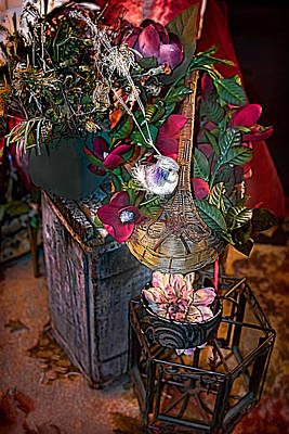 Floral Photograph - Forever Preserved 1 by Camille Lopez