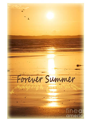 Photograph - Forever Summer 4 by Linda Lees