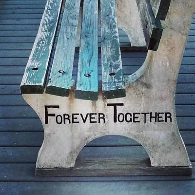 Texture Wall Art - Photograph - Forever Together  by Colleen Kammerer