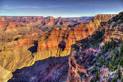 Photograph - Forever Young Grand Canyon National Park Arizona Art  by Reid Callaway