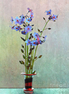 Photograph - Forget Me Not Flower Arrangement by Nina Silver