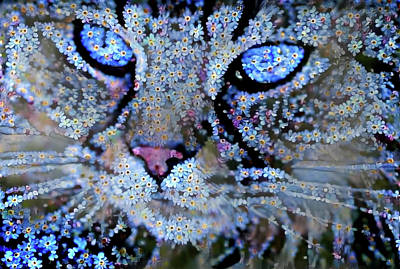 Photograph - Forget Me Nots Cat - Unforgettable by Peggy Collins