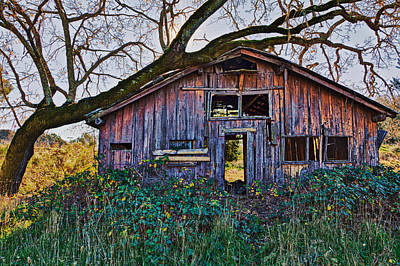 Overgrown Photograph - Forgotten Barn by Garry Gay
