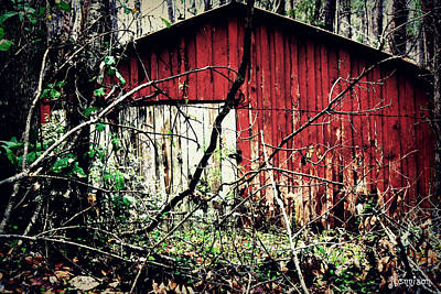 Photograph - Forgotten Barn by Jill Tennison