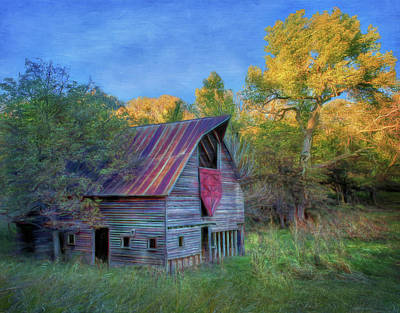 Photograph - Forgotten Barn by Nikolyn McDonald