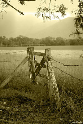 Barbed Photograph - Forgotten Fields by Holly Kempe