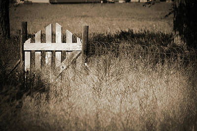 Photograph - Forgotten Gateway by Marie Leslie