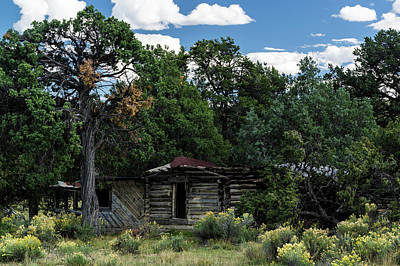 Photograph - Forgotten Homestead - 8783 by Jerry Owens
