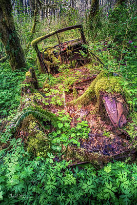Photograph - Forgotten Relic by Charlie Duncan