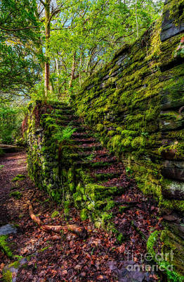 Dilapidated Digital Art - Forgotten Steps by Adrian Evans