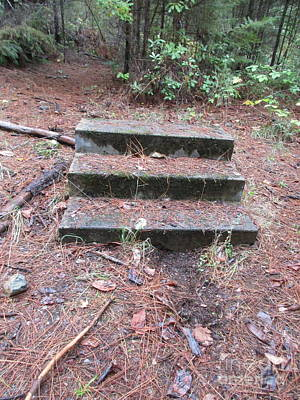 Photograph - Forgotten Steps Part 2 by Marie Neder