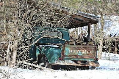 Photograph - Forgotten Truck by Benanne Stiens