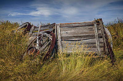 Photograph - Forlorn Wooden Farm Wagon In The Grass On The Prairie by Randall Nyhof