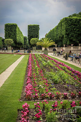 Blue Begonias Photograph - Formal Design At Luxembourg Gardens, Paris by Liesl Walsh