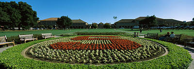 Stanford University Photograph - Formal Garden At The University Campus by Panoramic Images
